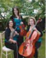 The SS String Trio in Hertfordshire
