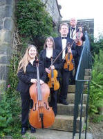 The MV String Quartet