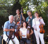 The Coulan Sona Irish Ceilidh Band